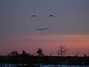 Glimlach uit de hemel