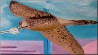 Foto schilderij vogel